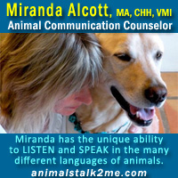 Miranda Alcott, Animal Communication Counselor
